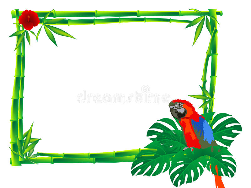 Download Parrot stock vector. Image of design, floral, tree, border - 31334564