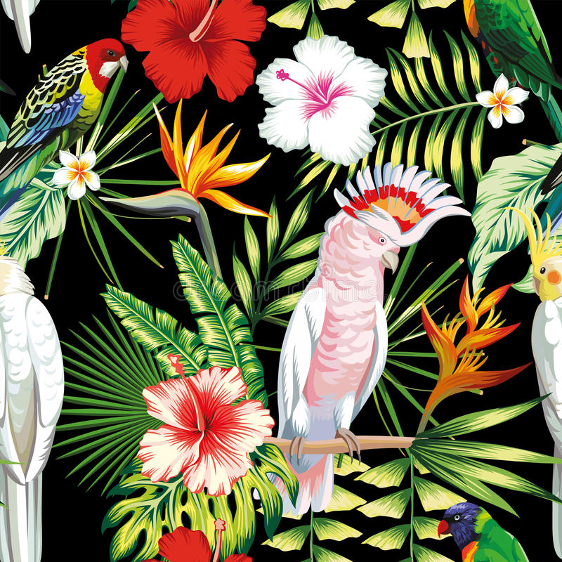 Parrot tropical flowers and leaves seamless pattern black backgr royalty free illustration
