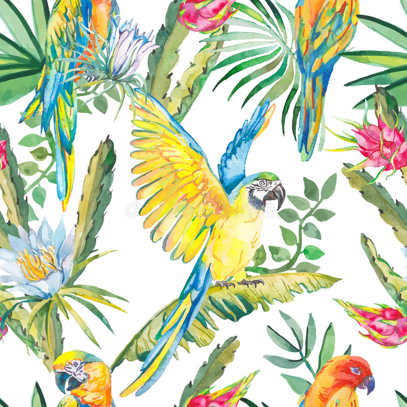 Parrots and exotic flowers. Macaw seamless pattern.Topical flower,leaves pitaya.Dragonfruit. stock illustration