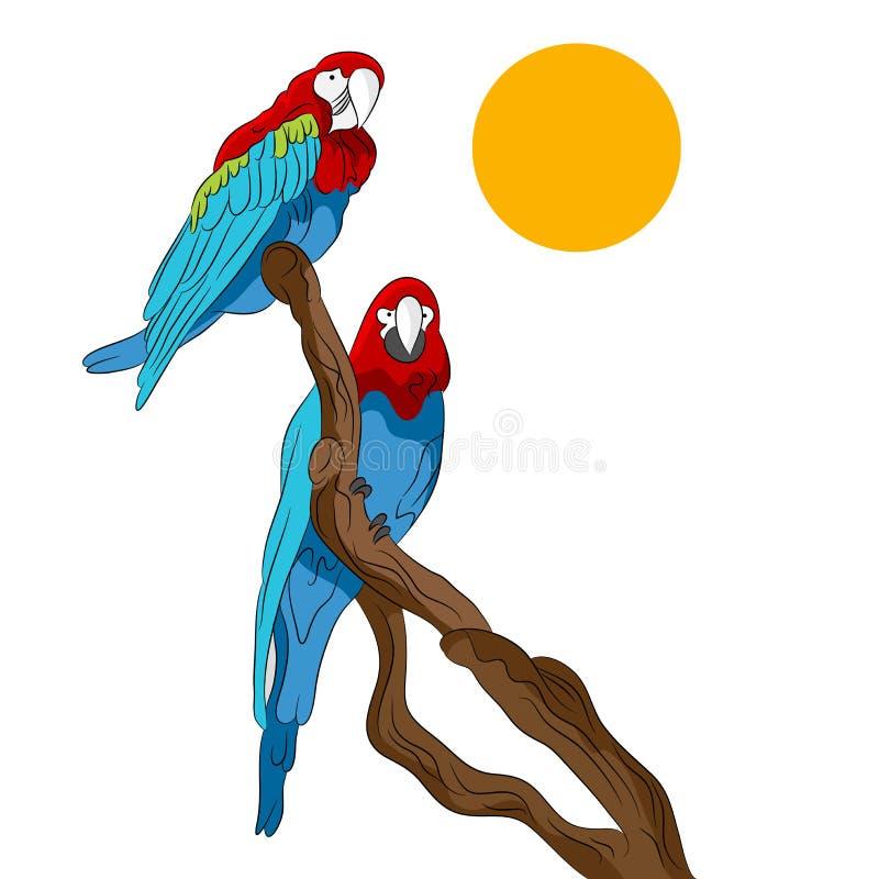 Parrots Sitting In Tree vector illustration