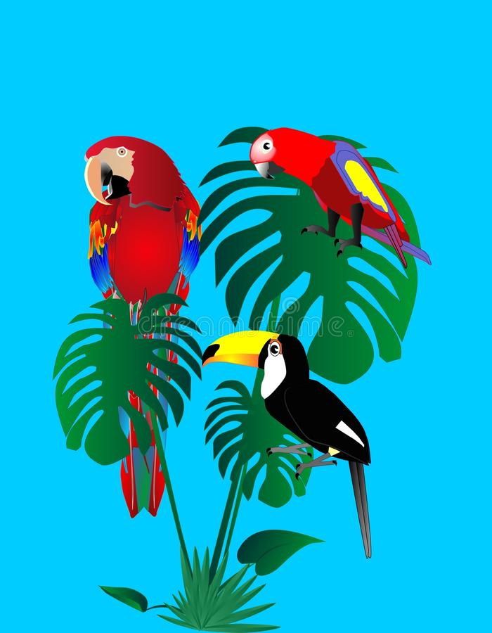 Parrots and tuscan sitting in a rain forest.. royalty free illustration