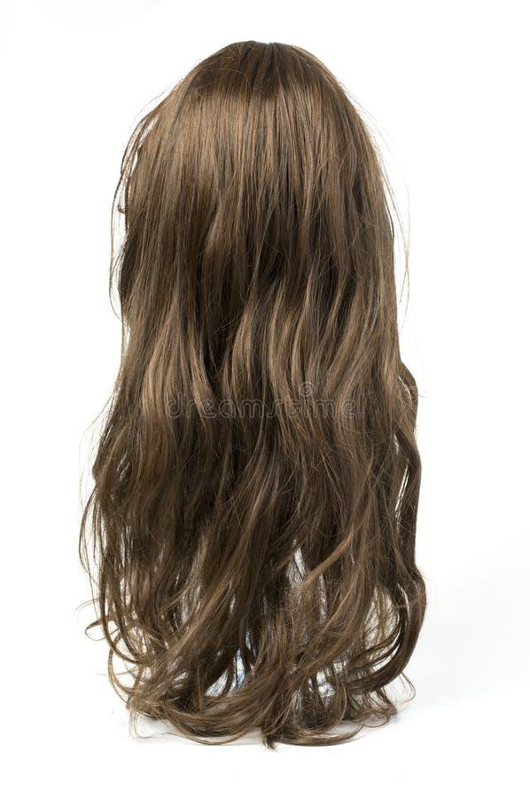 Parrucca grigia riccia lunga fotografia stock libera da diritti
