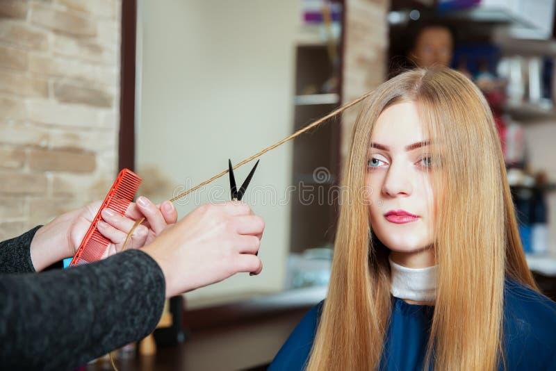 Parrucchiere che fa acconciatura con le forbici fotografia stock