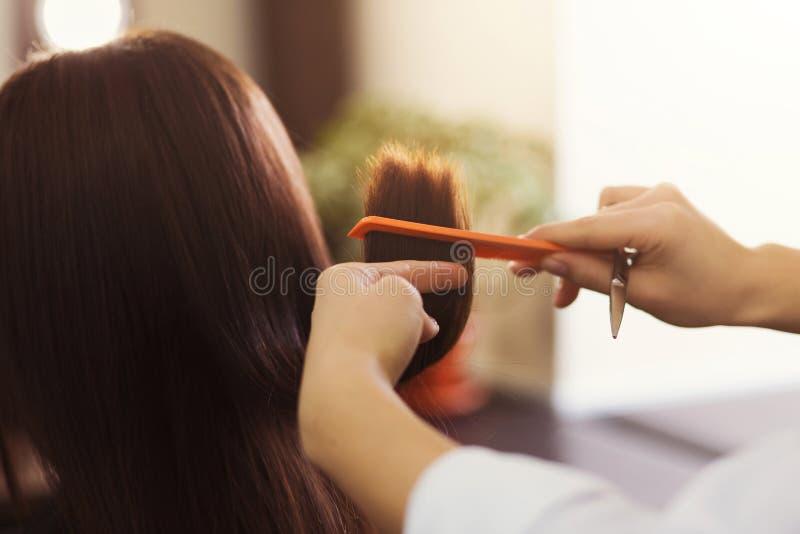Parrucchiere che taglia capelli marroni con le forbici fotografia stock