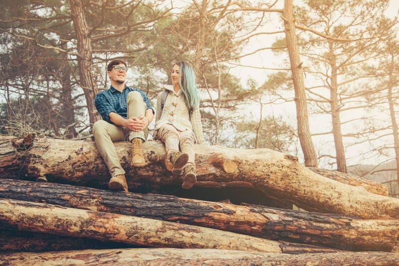 Parsammanträde på den stupade trädstammen royaltyfria bilder