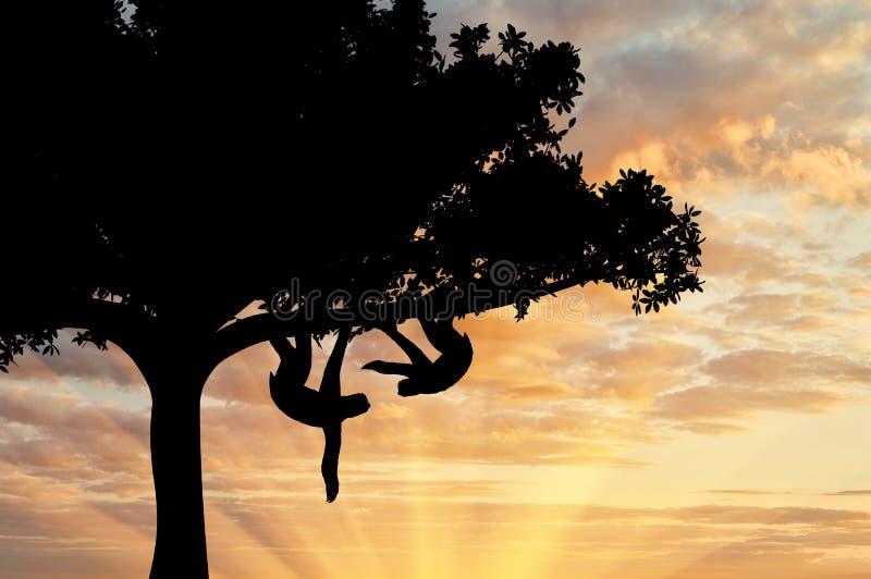 Parsengångaredjur i ett träd royaltyfria foton