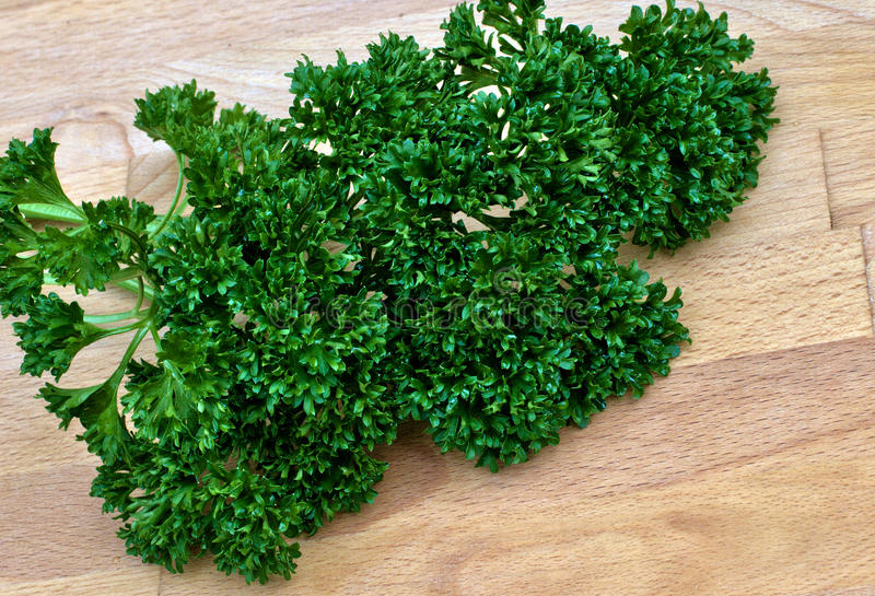 Download Parsley Stock Photos - Image: 19947343