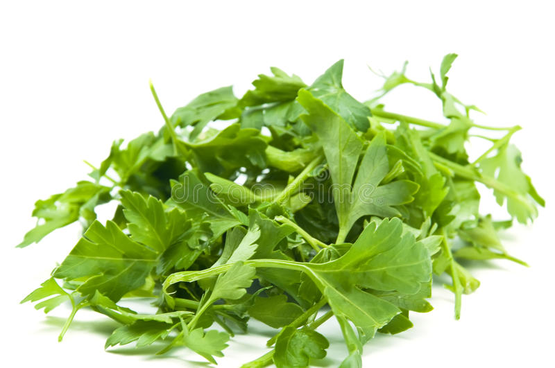 Download Parsley Royalty Free Stock Images - Image: 23675069