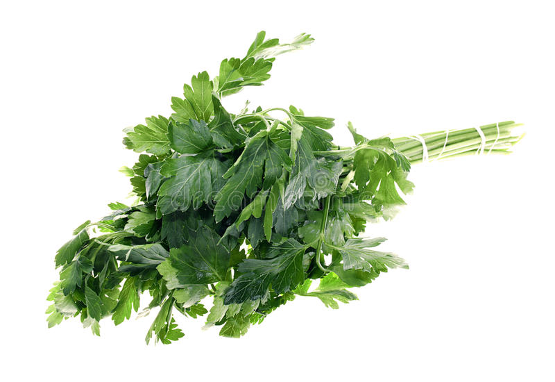 Download Parsley Royalty Free Stock Photos - Image: 9446778