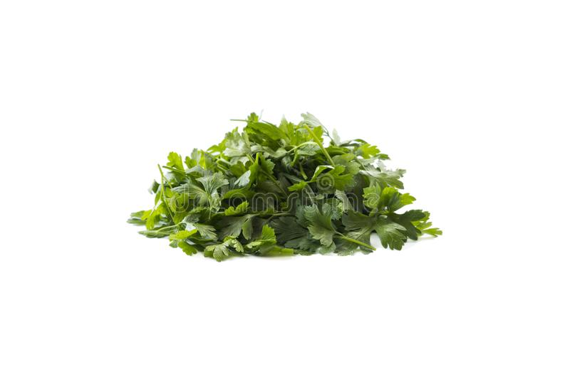 Parsley isolated on white background. Parsley leaves with copy space for text. Herbs isolated on white. Parsley leaves on white royalty free stock photography