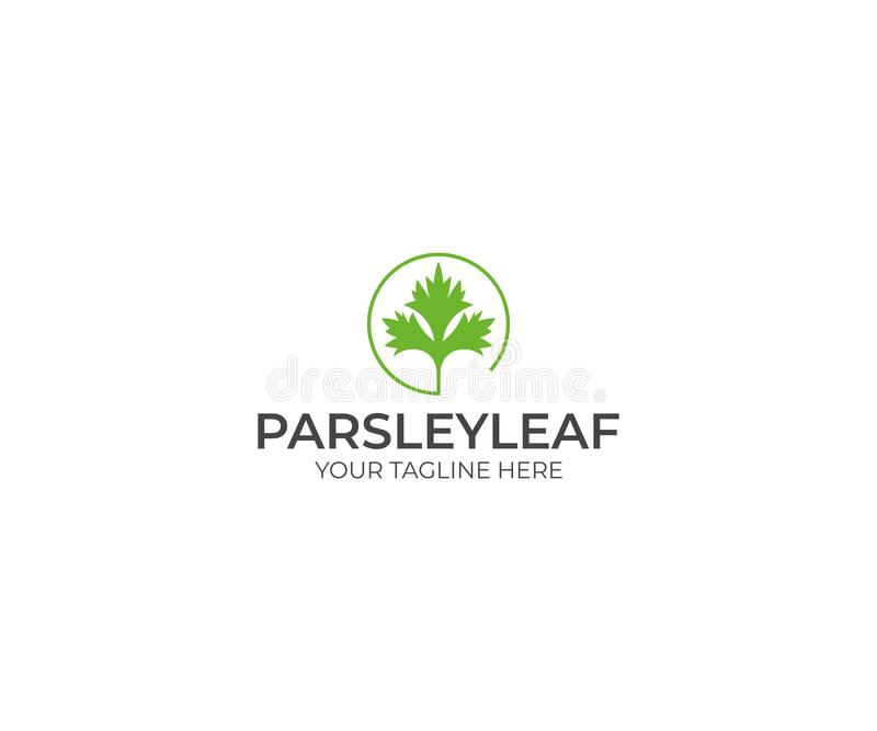 Parsley Logo Template. Cilantro Vector Design vector illustration