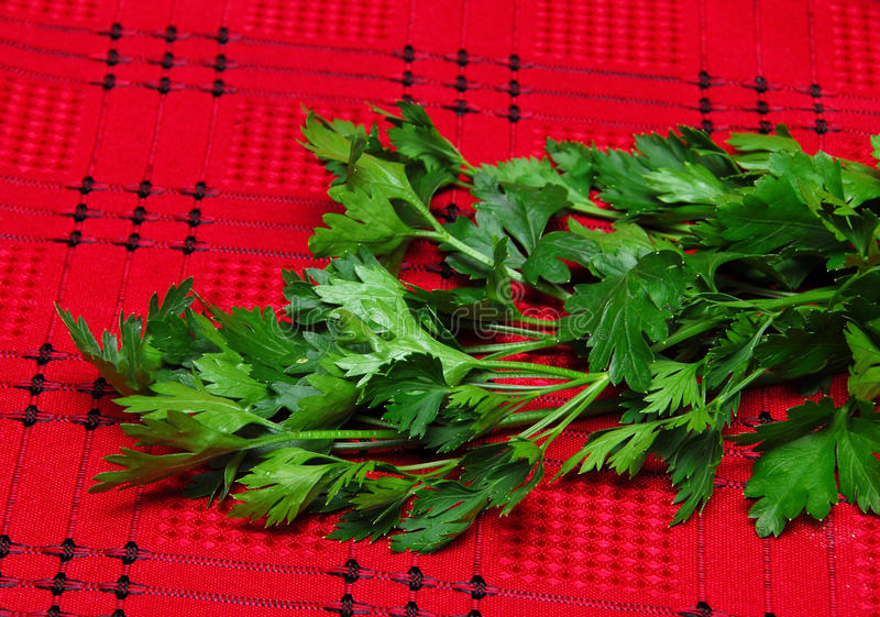 Parsley on red tablecloth