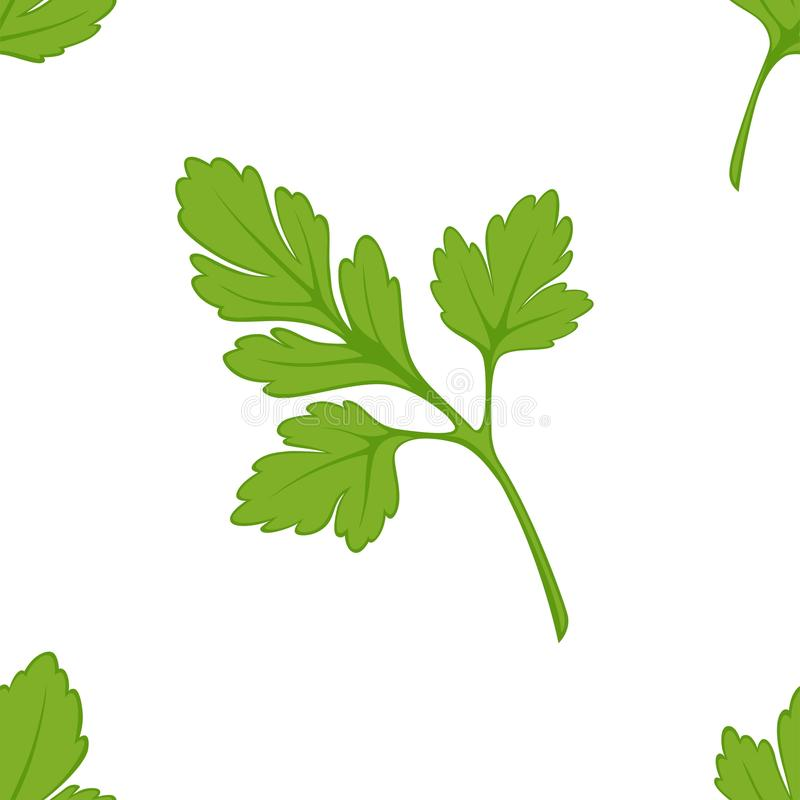 Parsley seasoning seamless pattern salad or dish ingredient. Seasoning parsley seamless pattern fresh salad or dish ingredient vector stem and leaves endless stock illustration