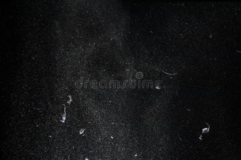 Partículas del polvo y de la pelusa del vuelo foto de archivo libre de regalías