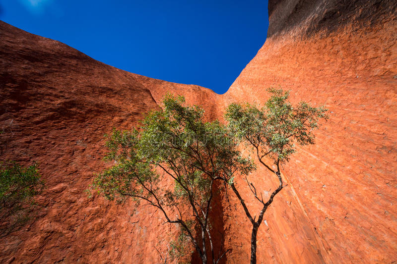 A part of Australia outback stock images
