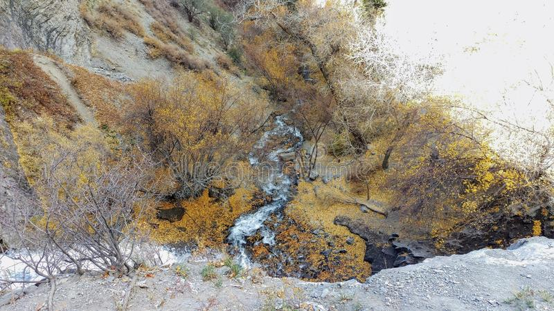 Battle Creek Canyon Autumn Gold. Part of Battle Creek Canyon in autumn near Pleasant Grove, Utah royalty free stock photography