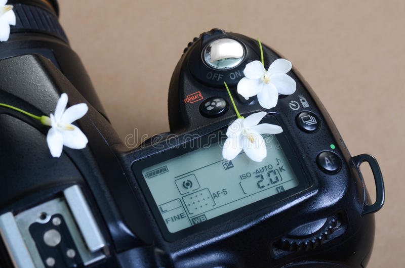 Part of camera top view and tiny white flowers on top. Many farmers in Thailand prepare their paddy fields by fire before the coming rainy season royalty free stock photos