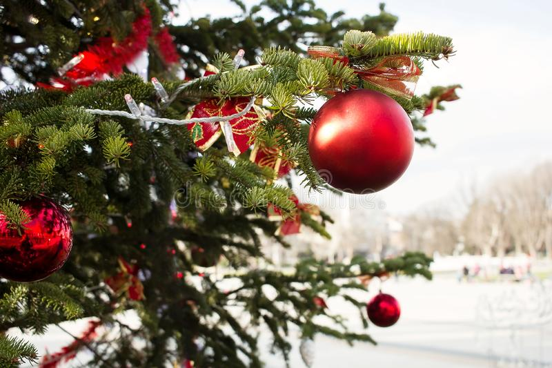 Part of a Christmas tree stock photos
