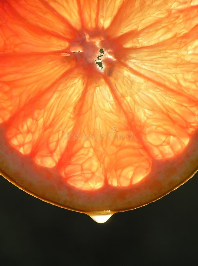 Part de fruit orange de raisin avec un dropâ à utiliser pour le fond photographie stock libre de droits