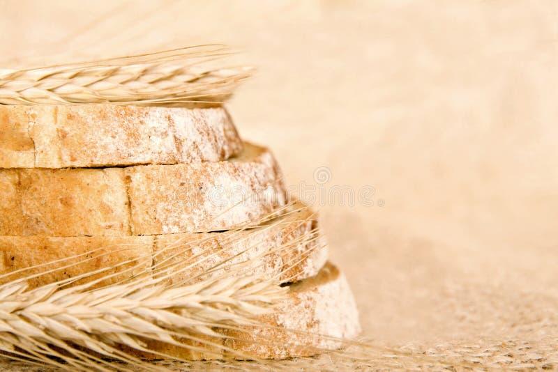 Part de pain avec du blé images stock