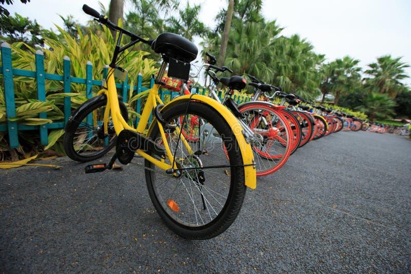 Part de vélo dans la porcelaine images libres de droits