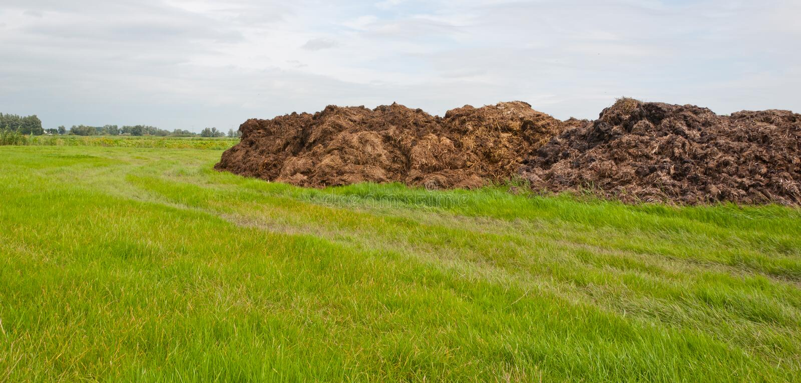 Download Part Of Dung Heap In The Field Royalty Free Stock Photos - Image: 20700298