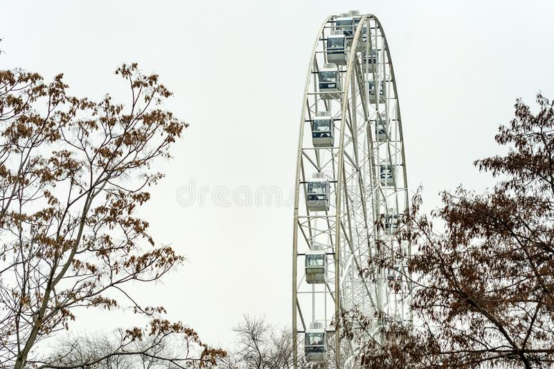Part of modern white Ferris wheel and grey sky. Part of modern white ferris wheel, tree branches against grey sky in cloudy weather stock photography