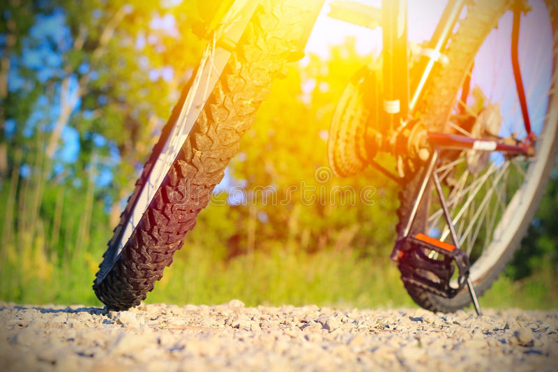 Part of mountain bike. On rocky trail stock image