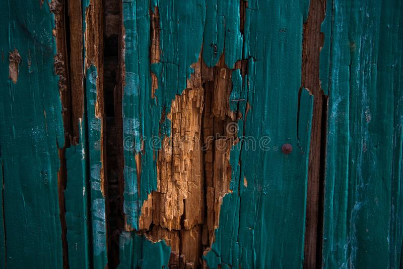 Part of the old green wood door royalty free stock photography