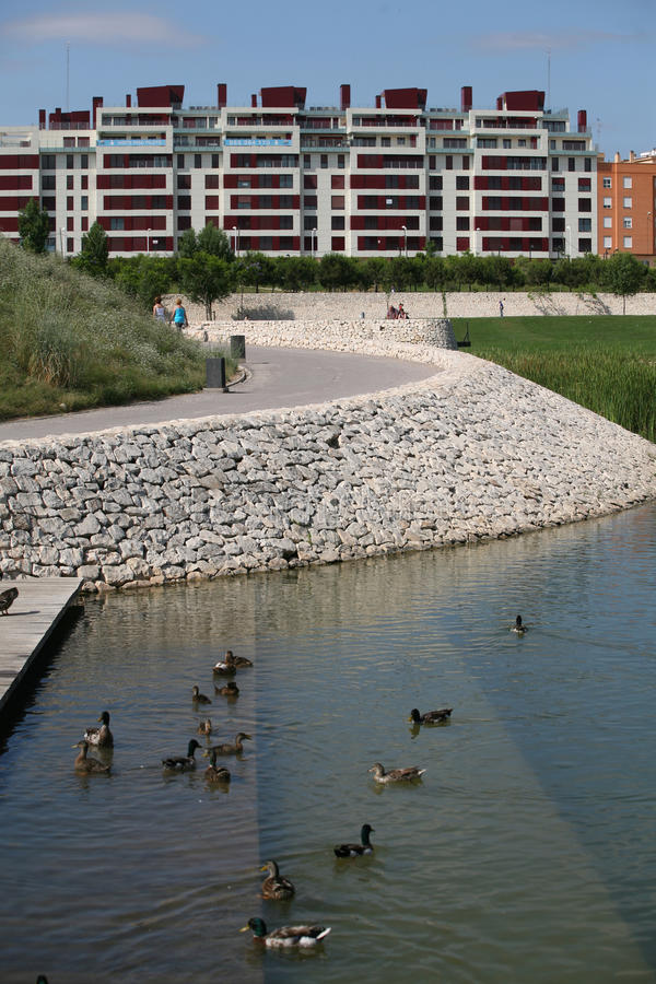 Download Part park stock photo. Image of duck, river, buildings - 24118268