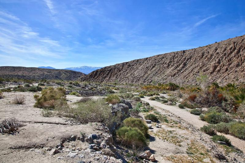 Fault Zone at Thousand Palms. Part of the San Andreas Fault Zone at the Thousand Palms Oasis Preserve royalty free stock photography