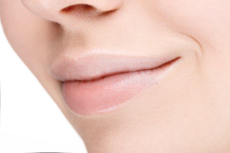 Parte da cara com os bordos completos bonitos sem composição foto de stock