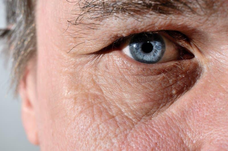 Parte de uma cara dos séniores com olhos azuis imagem de stock