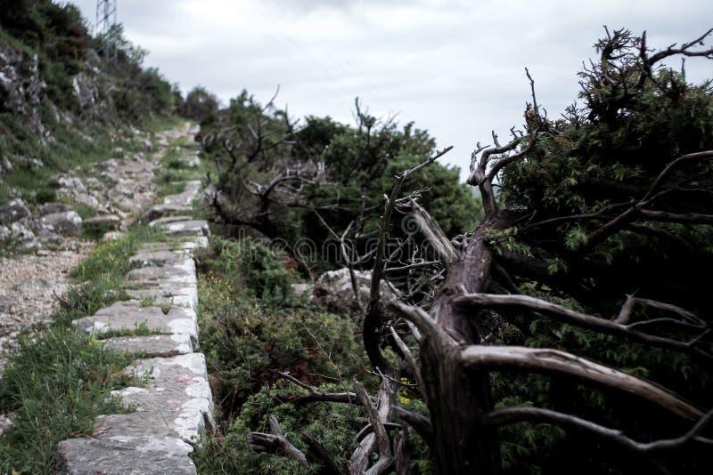 Parte da escada de Kotor em Montenegro foto de stock