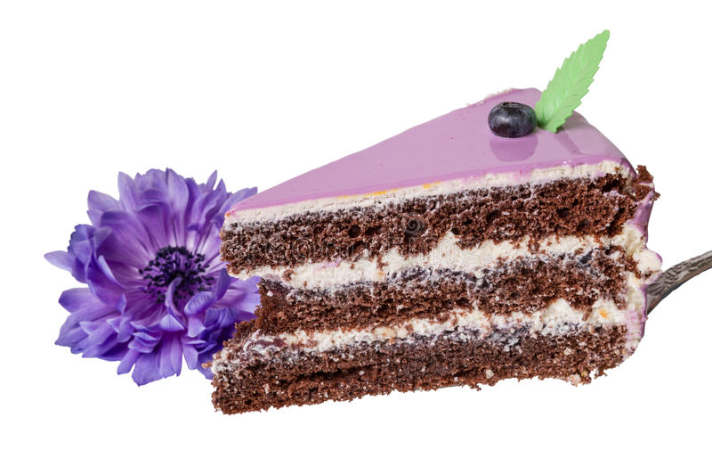 Parte de bolo com uvas-do-monte e a flor roxa imagens de stock royalty free