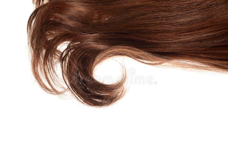 Parte de cabelo marrom moreno em uma onda isolada imagem de stock royalty free