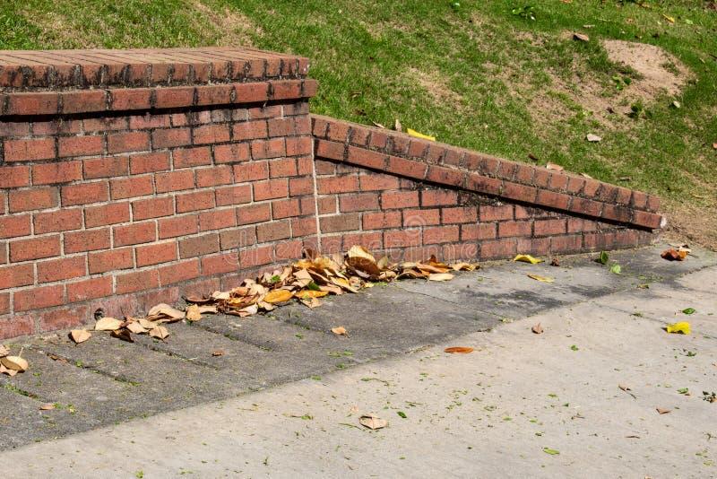 Parte de extremidade inclinada de parede de retenção velha do tijolo, concreta com folhas da magnólia imagens de stock royalty free