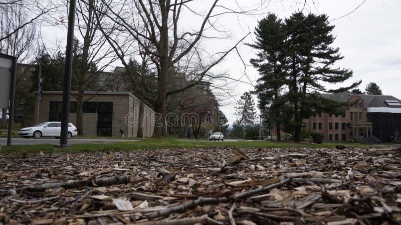 Parte de la universidad de Washington fotos de archivo libres de regalías