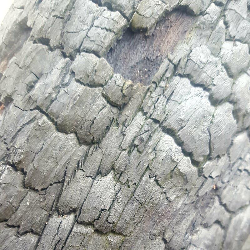 Parte de madeira carbonizada fotos de stock
