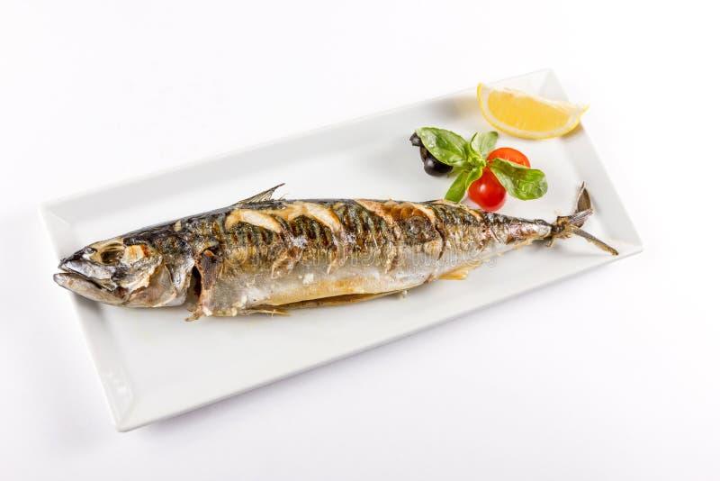 Parte de peixes suculenta foto de stock royalty free