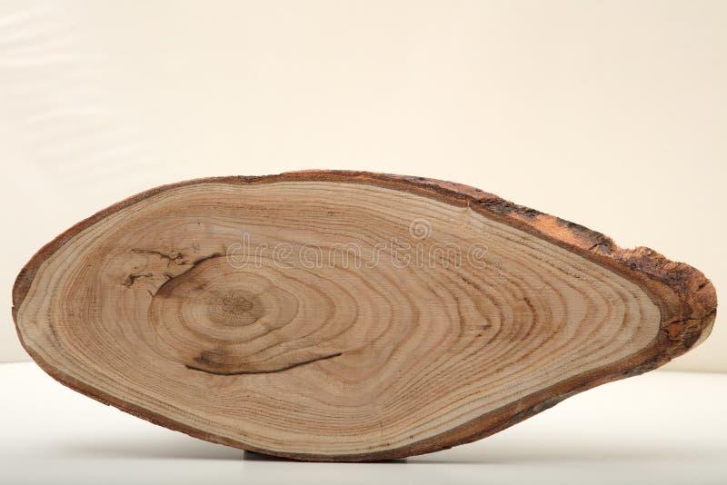 Parte de um coto de árvore em um fundo branco foto de stock