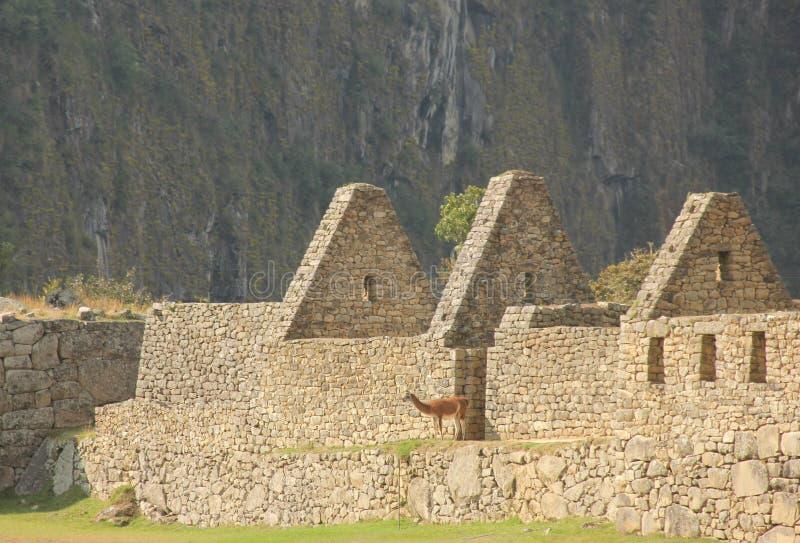 Parte de uma construção do Inca imagens de stock