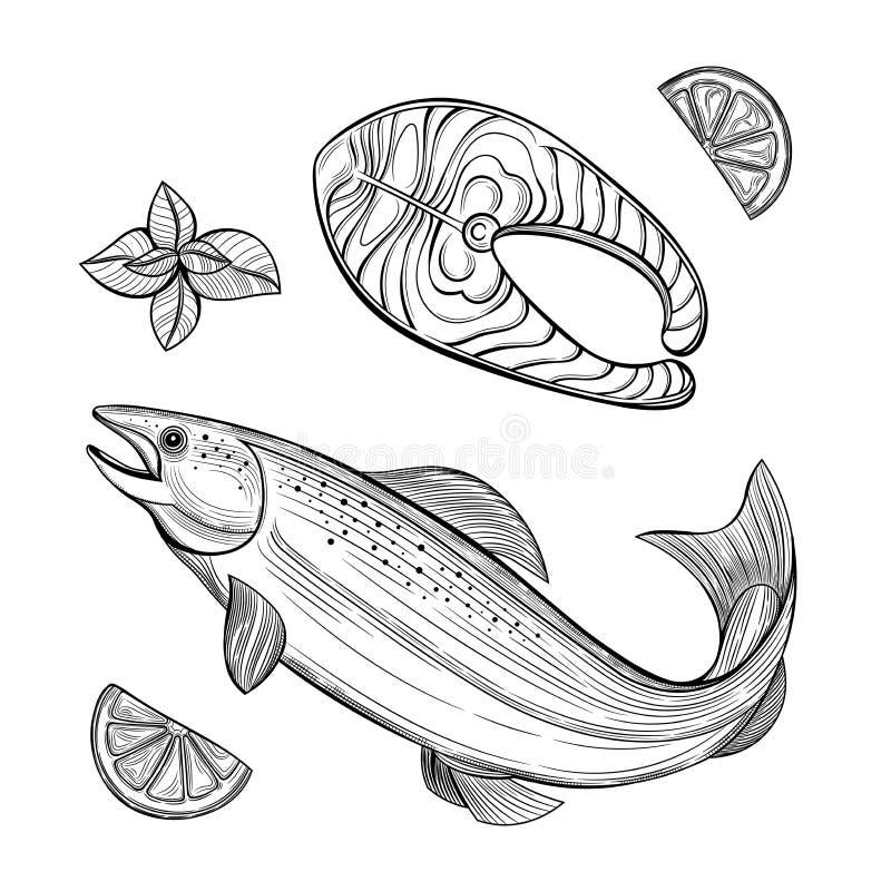 Parte dei salmoni Salmoni Frutti di mare Limone, menta royalty illustrazione gratis