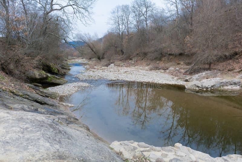 Parte del río seco en el bosque durante la primavera imagen de archivo libre de regalías