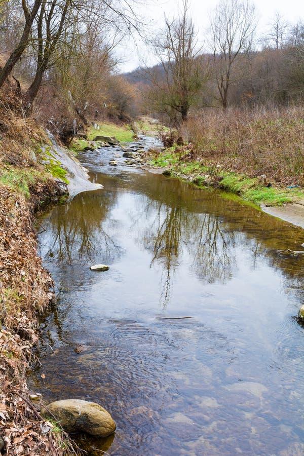 Parte del río seco en el bosque durante la primavera imagenes de archivo