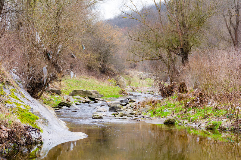 Parte del río seco en el bosque durante la primavera fotos de archivo libres de regalías