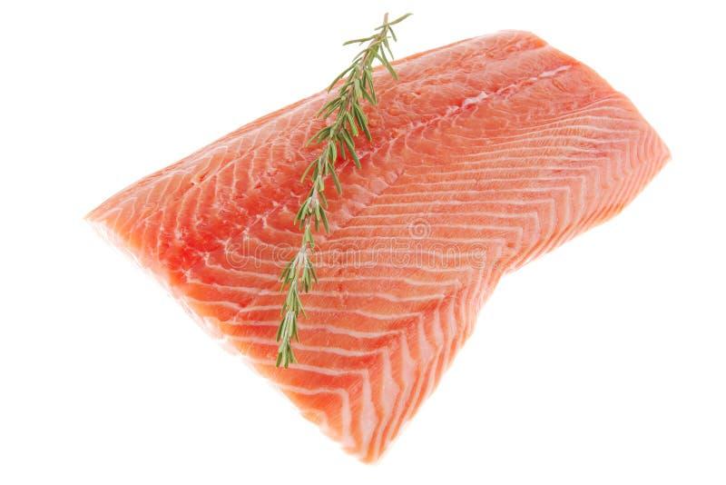 Parte di grande raccordo di color salmone fotografie stock libere da diritti