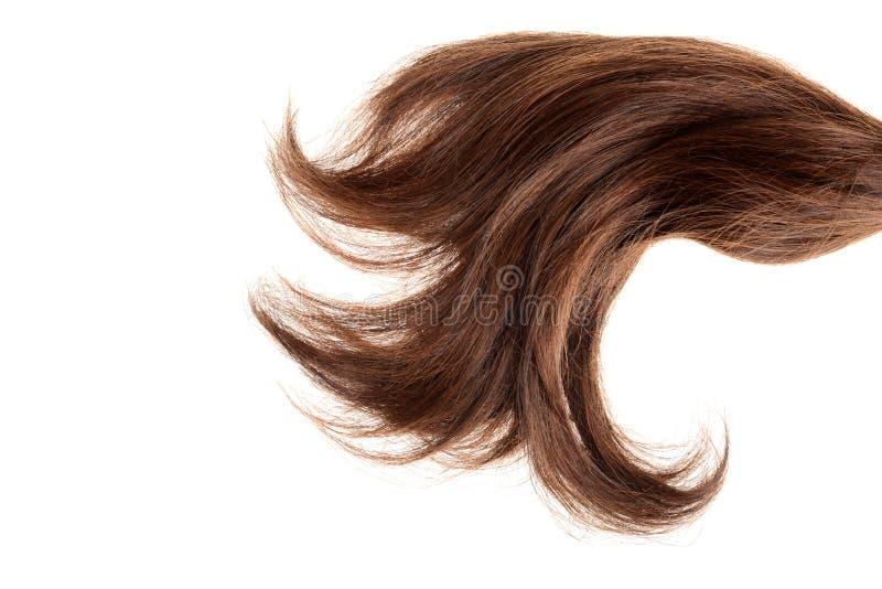 Parte do close up de cabelo marrom imagens de stock