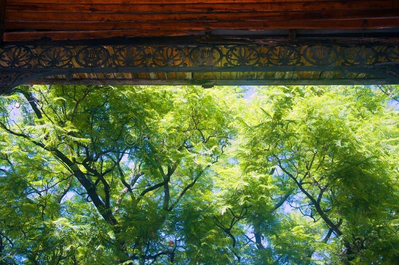 Parte do telhado do pavilhão interna e das árvores, verão, Espanha fotografia de stock royalty free