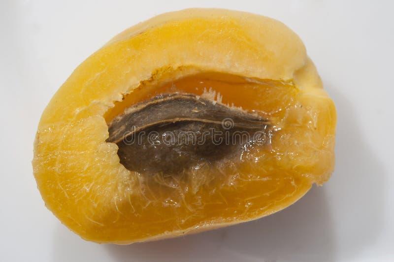parte dos frutos do abricó no fundo branco imagem de stock
